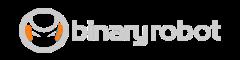 BinaryRobot Logo